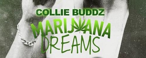 marijuana-dreams