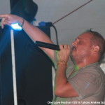 brusco-one-love-festival-3