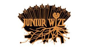 Intervista a Junior Wize: ecco come è la scena reggae giapponese