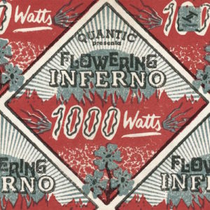 Quantic-Presenta-Flowering-Inferno-1000-Watts
