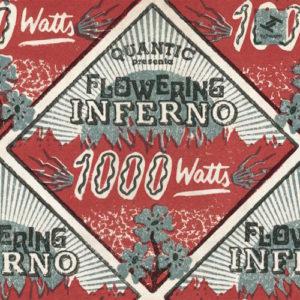 Quantic-Presenta-Flowering-Inferno-1000-Watts