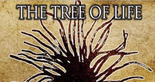 The Tree of Life è il secondo album di Acsel & The Reggae Rebel Band